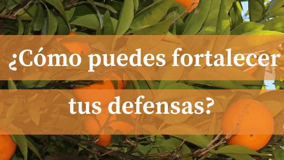 ¿CÓMO AUMENTAR NUESTRAS DEFENSAS?